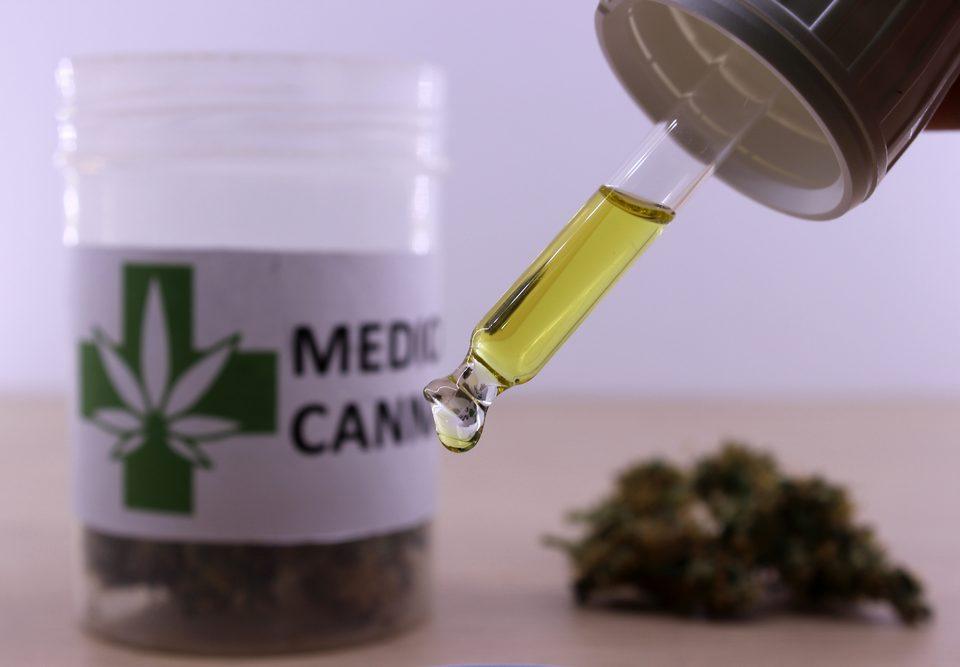medical cannabis terpene profiles